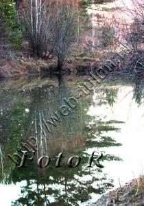 Озеро на Красном Яру, альбом Природа Тулуна и нашего региона